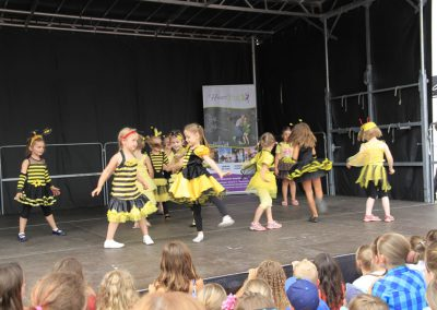 Stadtfest_Pic056